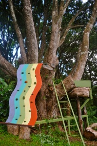 The Rainbow Wall Tree House